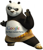 Website optimalisatie na Google Panda update